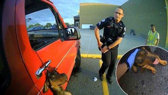 Quick Thinking Cops Save Dog Hanging From Car Window By