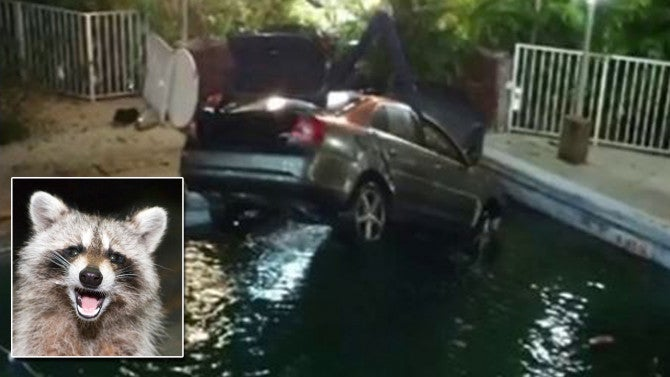 2016 Dodge Trucks >> Motorist Crashes Car Into Swimming Pool as She Tries to ...