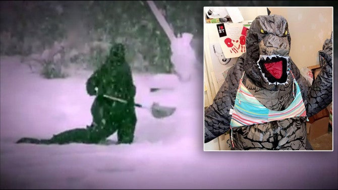 Godzilla Vs The Snowstorm Mom Goes Viral For Shoveling