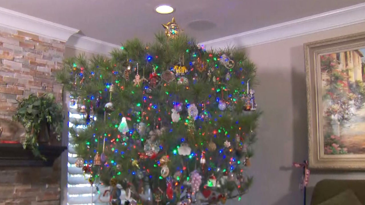 Meet the Family That Has Used the Same Christmas Tree for 34 Years ...
