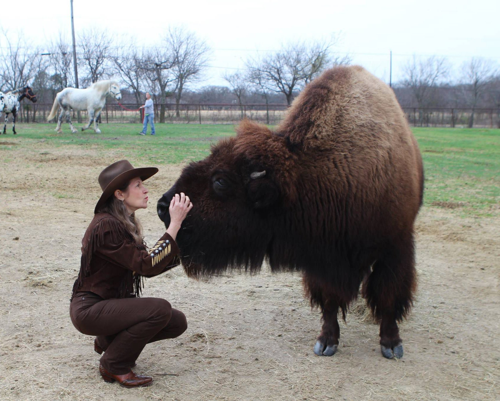 "Karen Shoeve calls her 7-year-old bison a ""giant puppy."""