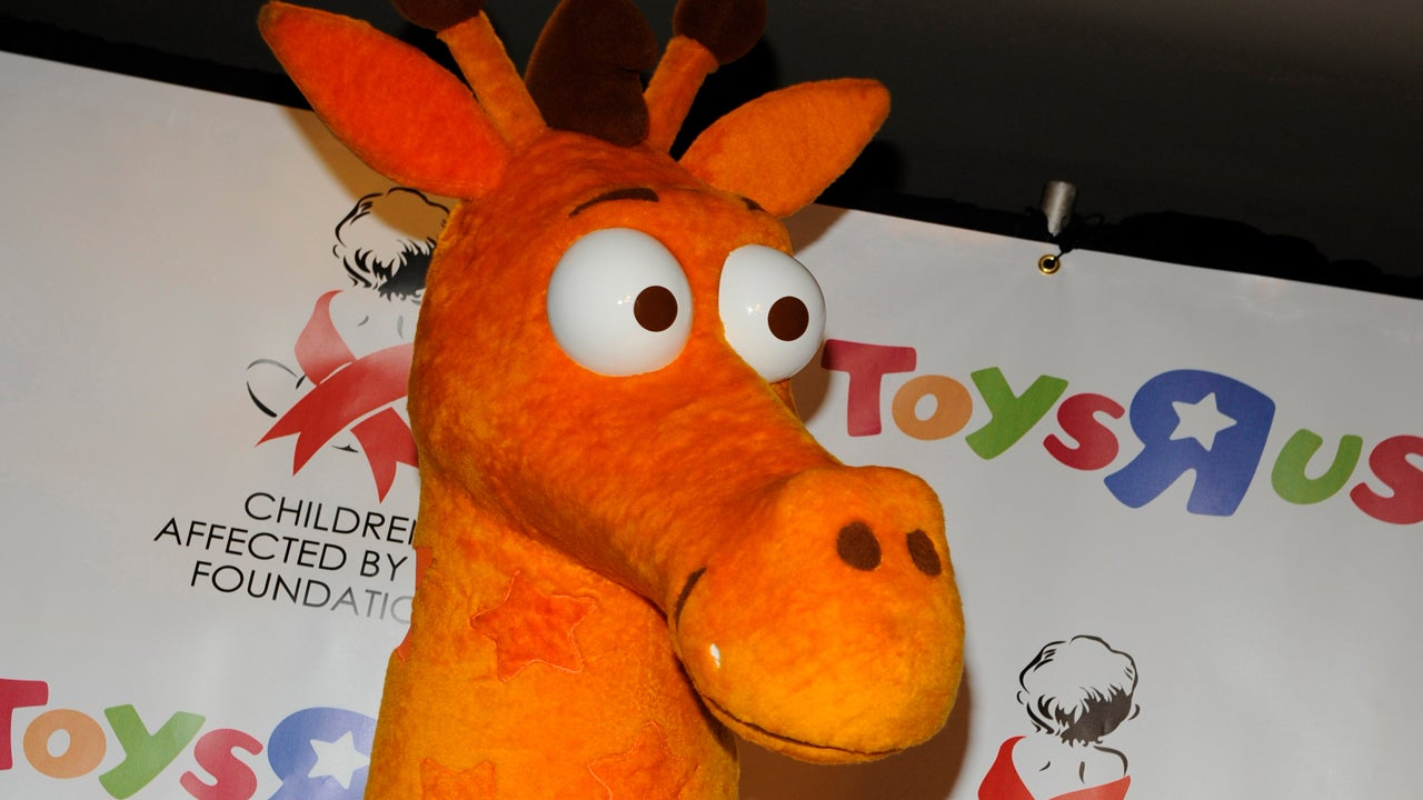 texas zoo offers a job to toys r us mascot geoffrey the