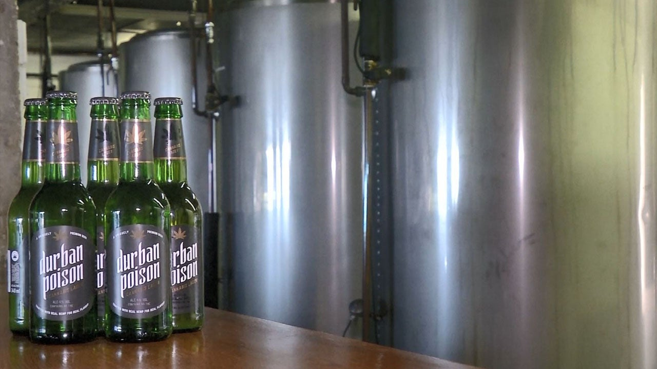 South African Beer Company Brews With Hemp Instead of Hops | Inside
