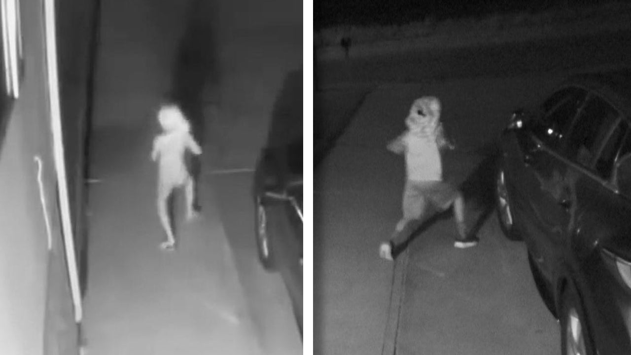 Was This the 'Dobby' Figure Caught on Security Camera Outside Colorado Home?