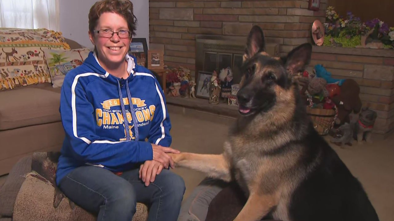 Meet the Dog From 'SNL' Skit That Honored Conan From ISIS Raid