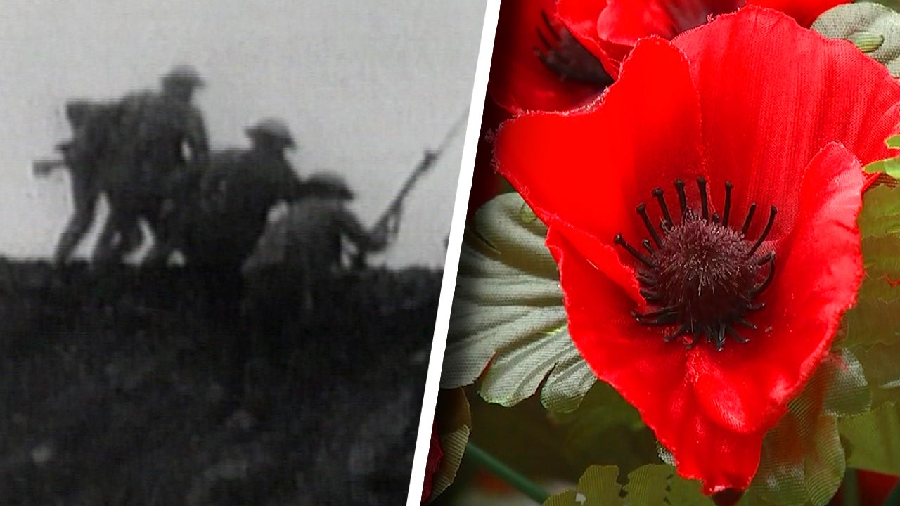 Why Canada and Other Nations Observe Remembrance Day on November 11th