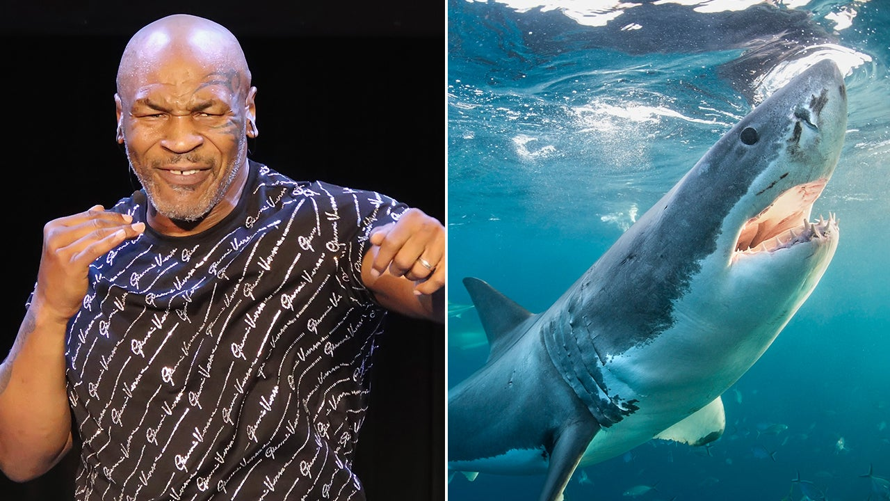 Mike Tyson Goes Face-to-Face With His Biggest Fear: Sharks