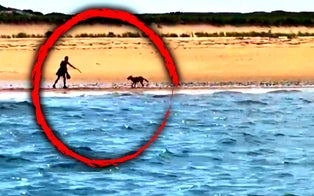 Woman Stalked by a Coyote on Cape Cod Beach Thanks the Boaters Who Rescued Her