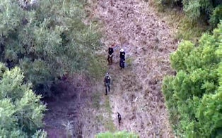 Cadaver Dogs Brought in During Search for Brian Laundrie in Florida Swamp as Reward Reaches $200K