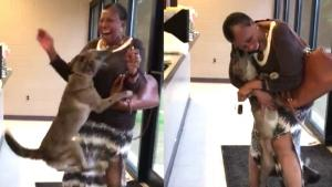 Mississippi Woman and Beloved Dog Dance for Joy as They Reunite