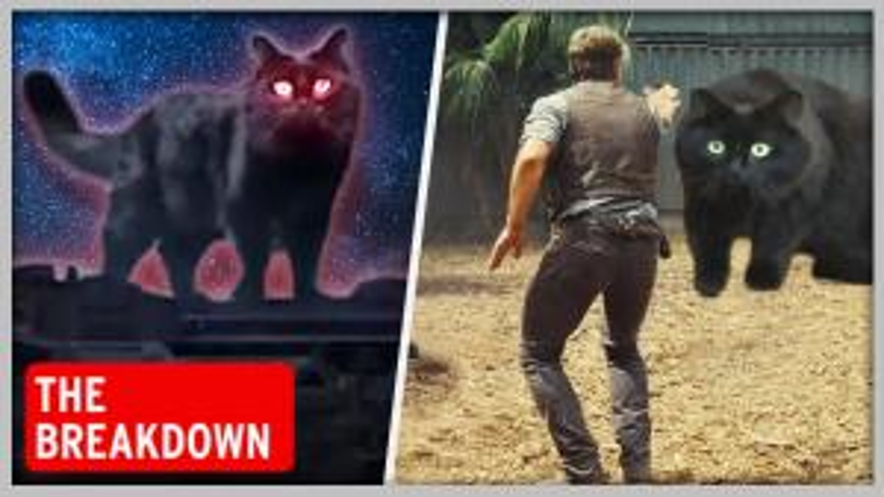 The Breakdown: Meet OwlKitty, the Pet Cat Who Stars in 'Jurassic Park'