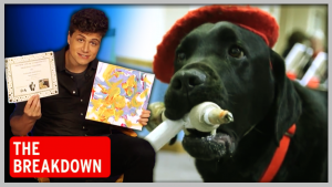 The Breakdown: Meet the Dog That Paints and the Gator That Hugs