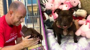 Kansas Man Moves Into Animal Shelter With Dog That's Been There for 400 Days