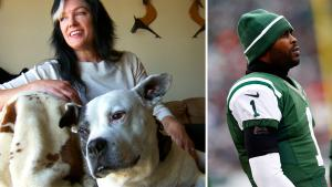 Dog Rescued During Michael Vick Scandal Now Helps Others as a Therapy Pet