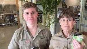 Steve Irwin's Family Is Working to Save Injured Animals in Australia Wildfires