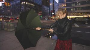 Is This the World's Toughest Umbrella?
