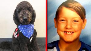 Why This Dog May Be Key to Discovering What Happened to Missing Idaho Kids