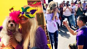 Celebrate Carnival Season with Our Most Fun Mardi Gras Stories