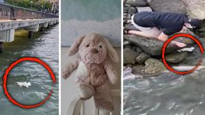 New Jersey Family Searches for Hero Who Pulled Teddy Bear From Hudson River