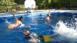 Homeowners Rush to Buy Backyard Pools as They Face Summer of Social Distancing