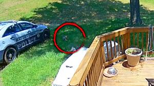 Wild Police Chase Barrels Through Maryland Doctor's Backyard