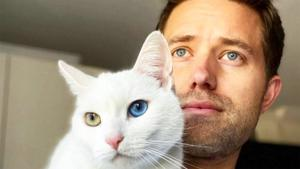 Are Men Who Like Cats Less Likely to Score a Date?