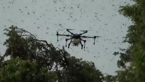 India Uses Drones to Battle Locust Swarms Near Taj Mahal