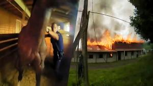 Police Officer Rushes Into Burning Pennsylvania Barn to Rescue Trapped Horse