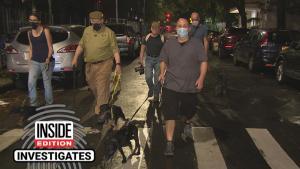 Meet the Dog Show Judge Who Moonlights as a Rat Hunter