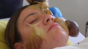 Spa Applies Snails to Skin for Facial It Claims Boosts Collagen