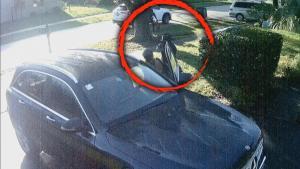 Woman Ambushed at Gunpoint In Her Florida Driveway
