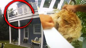 New Jersey Police Officer Makes Daring Rescue to Save Cockapoo