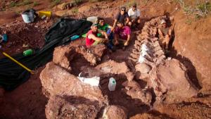 Fossils Discovered in Argentina Could Be Largest Dinosaur Ever Found