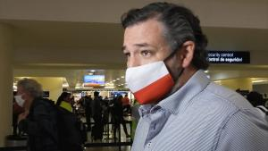 Leaked Texts From Ted Cruz's Wife Contradict Senator's Initial Story
