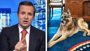 Biden's Dog Champ Targeted by Greg Kelly in Bizarre Newsmax Segment