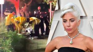 Lady Gaga's Dog Walker Rescued by Paramedics Trying to Save His Life