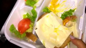 Fyre Festival Producer Blames Cheese Sandwich for Event's Failure