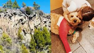 Simba the Goldendoodle Miraculously Survives 200-Foot Fall