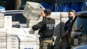 FBI Raid Leaves Dozens of Private Vaults Emptied in Search of Cartel Cash