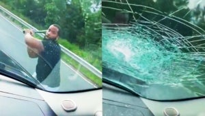 Dad and 2 Sons Terrified as Angry Driver Bashes in Windshield With Baseball Bat