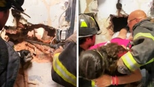 Why Firefighters Had to Rescue Teenager Trapped in Store's Dressing Room