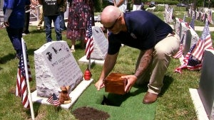 Marine Dog Gets Military Funeral After Over 400 Combat Missions in Middle East