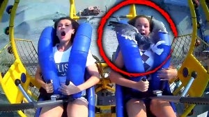 13-Year-Old Gets Smacked in the Face With a Seagull on Amusement Park Ride