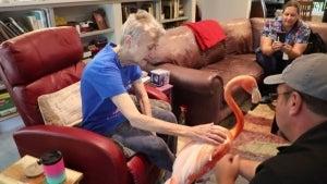 Flamingo Named Mango Visits Cancer Patient at Texas Hospice Facility