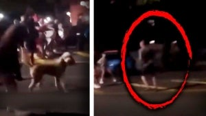 Firefighter Walking Dog Gets Surrounded by 100 Teens in 'Fight Night' Attack