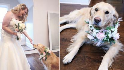 Briana Schaefer walked down the aisle with her dog, Norah.