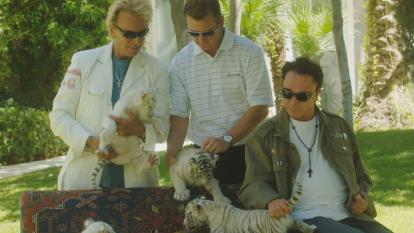 A trusted Siegfried and Roy trainer says the truth about that night has been covered up for the last 16 years.