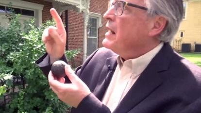 Homeowner Randall Pratt holds up the cannonball found in his home's tree.
