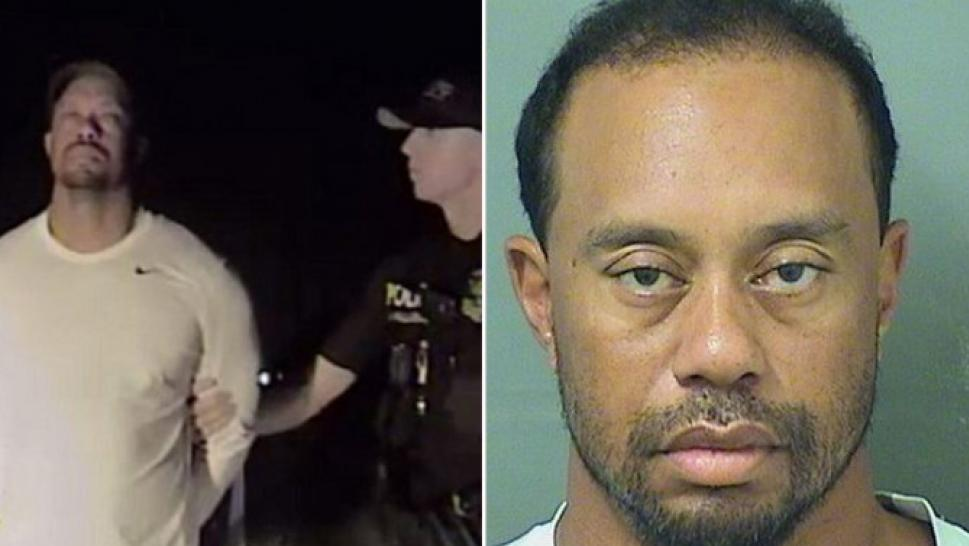 Tiger Woods Seeks Professional Help to Manage Medications ...