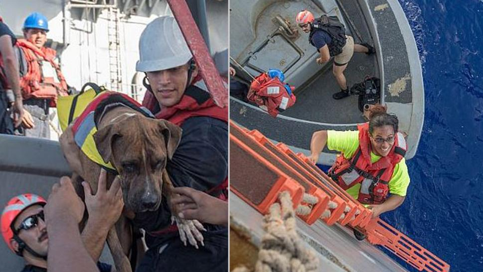 Two Women, Dogs Rescued After 5 Months Stranded at Sea